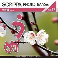 GORIPPA PHOTO IMAGE vol.17 「うめ編」