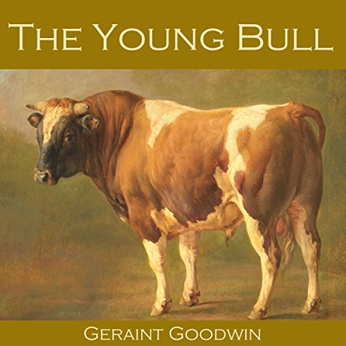 The Young Bull audiobook cover art