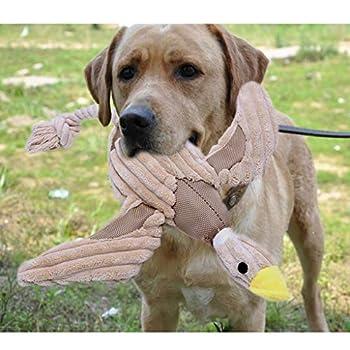 Hergon Jouet à mâcher pour animal de compagnie, jouet couinant en peluche pour chien