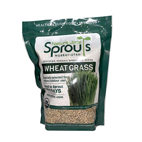 Nature Jims Sprouts Wheatgrass Seeds - 100% Organic Wheat Grass Seed for Sprouting - Cat Grass Planter Seeds, Rich in Vitamins, Fiber and Minerals - Non-GMO, Healthy Wheatgrass Sprout Growing Seed