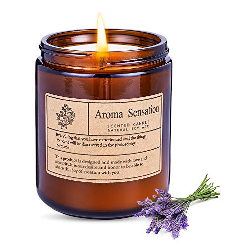 WanderLand Large 7 Oz. Soy Candles, Scented Aromatherapy Soy Candles for Home, Made with Soy Wax for Amber Jar Scented Candles Gifts for Women Men Girlfriend Boyfriend, Lavender Eucalyptus
