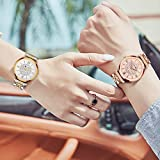 Seven Analogue Women's & Girl's Watch (White Dial Rose Gold Colored Strap)