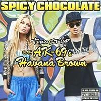 Turn It Up Feat.AK-69&Havana Brown(DVD付)