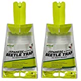 Rescue Disposable Beetle Trap
