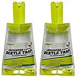 Rescue Disposable Asian Beetle Trap