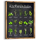 REINDERS Küchenkräuter - Wandbild 40 x 50 cm