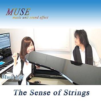 The Sense of Strings