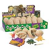 TOPCHANCES Kit de 12 huevos de dinosaurio Dino Cavar Up con 12 tarjetas de comercio y herramientas juguetes de dinosaurios regalos arqueología STEM Science Kits para niños