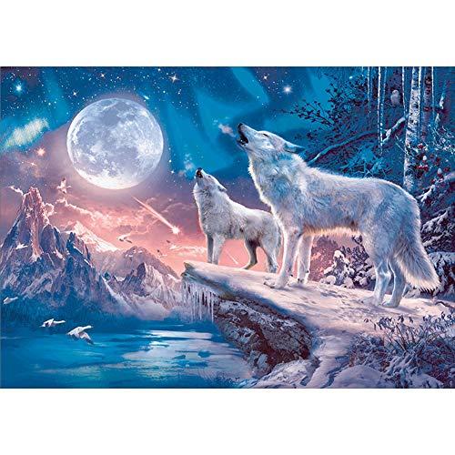 Sunnay - Diamond painting, immagine per pittura con diamanti, Set per pittura con cristalli, immagine di lupo artico, pittura fai da te, 40 x 30 cm