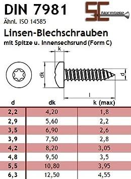 SC7981 mit Spitze - DIN 7981 Blechschrauben mit Linsenkopf - Edelstahl A2 V2A - - Form C Innensechsrund Antrieb TX 3,9x45 - 50 St/ück ISO 14585