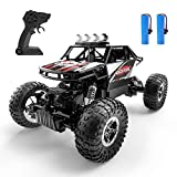 DEERC DE45 RC Cars Remote Control Car Off Road Monster Truck,1:16 Metal Shell 4WD Dual Motors LED Headlight Rock Crawler,2.4Ghz All Terrain Hobby Truck with 2 Batteries for 90 Min Play,Boy Adult Gifts