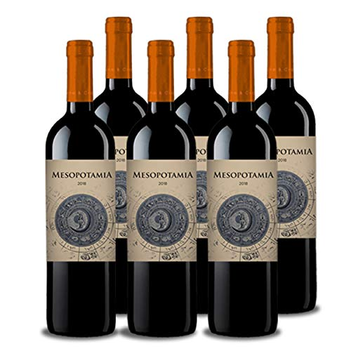 Vino tinto MESOPOTAMIA Roble 2018 (6 bot. x 75 cl.) - Vino tinto de toro con barrica - Mejor vino de Toro joven roble de Abadia de Aribayos Vinos y Cervezas