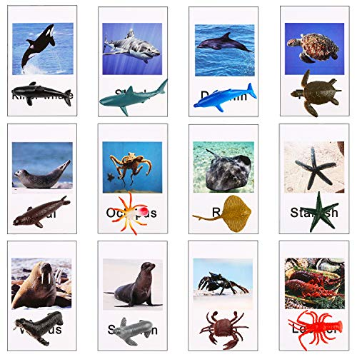 12 pcs Ocean Sea Animal Figures with 12pcs Matching Cards - OOTSR Ocean Creatures with Flash Cards for Education, Insect Themed Party, Playtime and Treasure Hunt