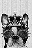 Hipster Boston Terrier Dog with Crown and Steampunk Goggles Cubicle Locker Mini Art Poster 8x12