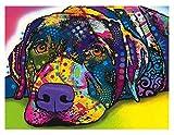 JYSHC Puzzle 1000 Piezas Puzzle De Madera Mundo Animal Mi Perro Juguete Educativo Km3Zj