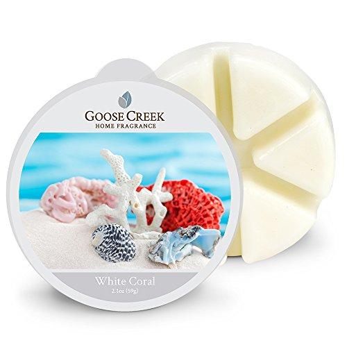 Goose Creek Coral Candele di Cera, Bianco