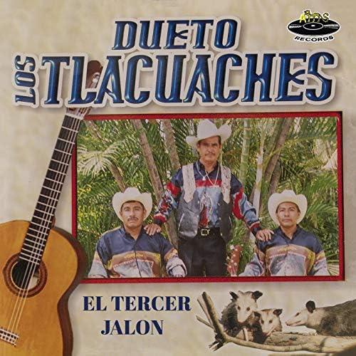 Dueto Los Tlacuaches