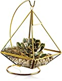 KOOK Geometric Pyramid Hanging Terrarium with Stand - Gold