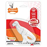 Nylabone Dura Dental Dino Small Chicken Flavor Dog Chew Toy