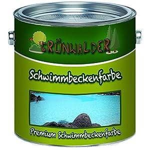 Grünwalder – Pintura para piscinas de color premium, color de piscina en azul, blanco, verde, verde mar, gris, gris antracita, gris claro, no tóxico, impermeable, Gris