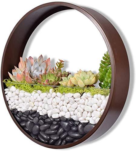 Maceta redonda de cristal de 30,48 cm, para colgar en la pared, de metal, de hierro, soporte para macetas de aire, decoración de pared, contenedor vertical para suculentas flores de cactus