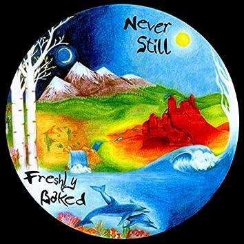 Never Still