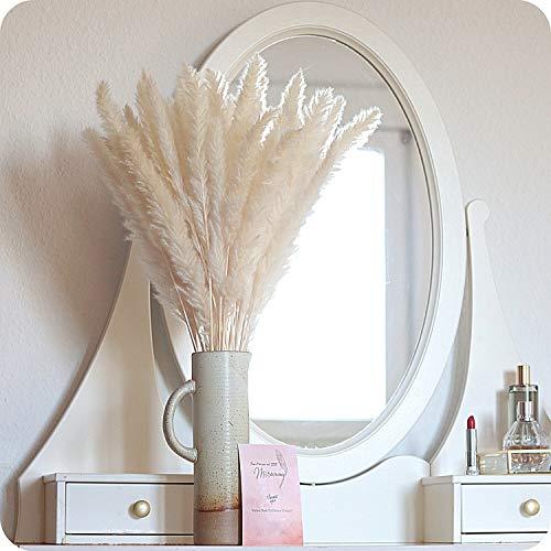 MIRAMAY® Pampasgras getrocknet & sehr fluffig - 17 Stück in weiß   Trockenblumen   Deko Highlight   Blumenstrauß   Premium Dekoblumen   Boho Interior