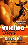 Viking Heat: Viking Navy SEALs, Book 6 (English Edition)