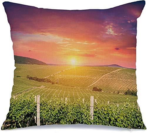 Funda de almohada Uvas de vino de otoño maduras en temporada Color Vines Vitamina Florencia Toscana Área de comida Sunset Cheese Drink Cómoda funda de cojín para silla de coche Sofá Cama de 45x45 cm
