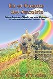 En el puente del arcoiris: Como superar el duelo de una mascota. En memoria de nuestro amadísimo angelito peludo Ticko