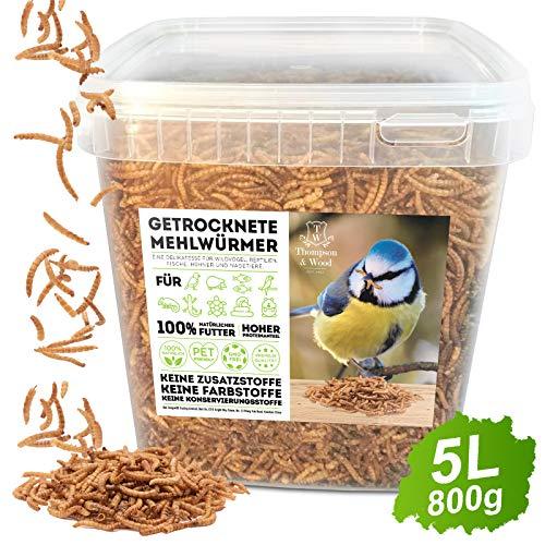 Thompson&Wood Mehlwürmer getrocknet 5Liter Eimer, optimales Zusatz Futter für Reptilien, Fische, Vögel & Co.