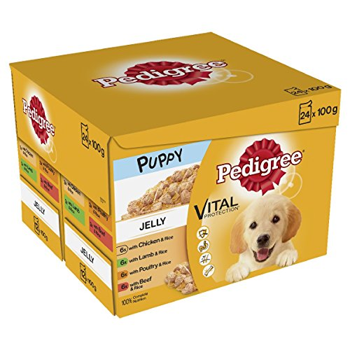 Pedigree Junior Wet Dog Food for Young Dogs and Puppies 2-12 Months Mixed Selection in Jelly, 48 Pouches (48 x 100 g)