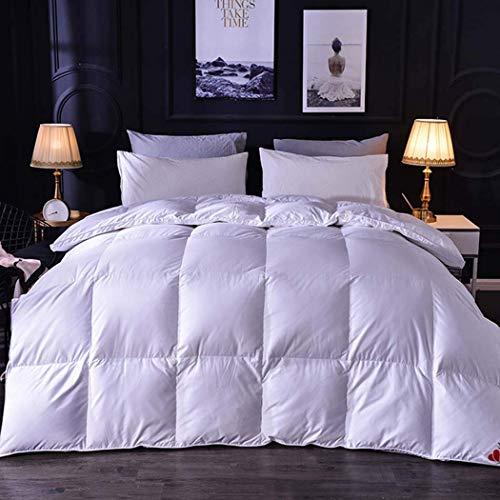 smzzz Home Accessories All Season 95% Goose down Alternative Quilted Comforter Twin 900G Duvet Insert with Corner Tabs Duvet Insert Stand Alone Comforter WHITE 2 2.2 * 2.4M (1400G)
