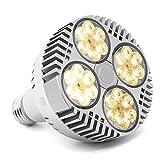 LED Pflanzenlicht für Zimmerpflanzen 120W, CFGROW e27 Pflanzenlampe Glühbirne Vollspektrum, Pflanzenleuchte Weiß Wachstumslampe für Zimmergarten Hydroponik Gewächshauspflanzen Wachstum