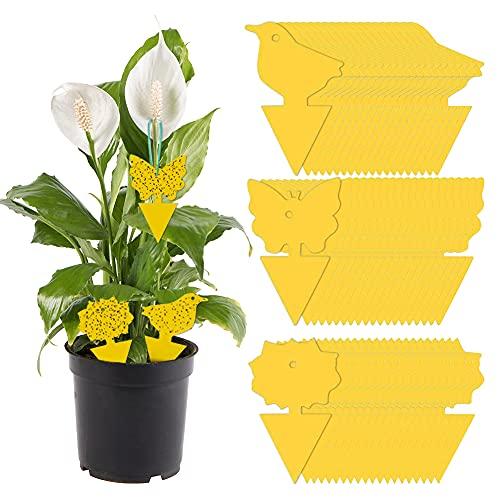 60Pcs Gelbtafeln Fliegenfalle Hängende und Steckbare Fliegenfalle, Wasserdicht Obstfliegenfalle Gegen Blattläuse, Minierfliegen und Ungeziefer, Ideal für Pflanzen Auf dem Balkon oder Im Garten