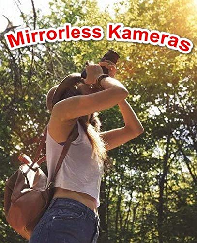 """""""DSLM"""" More information about mirrorless cameras (English Edition)"""