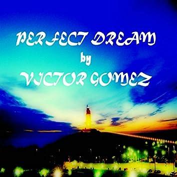 Perfect Dream (Original Mix)