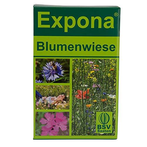 Blumenwiese EXPONA I 1 KG I Saatgut für Wildblumenwiese I Einjährige und mehrjährige Blumen inkl. Grassamen I 40 verschiedene Blumen, Kräuter und Kleearten I 100 m²