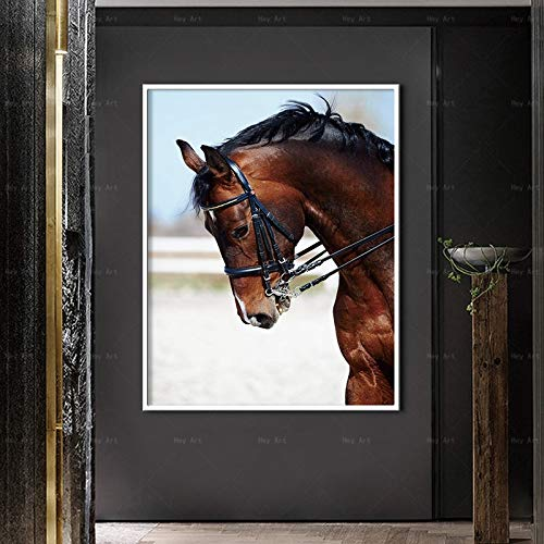 N / A Single frameless brown horse modern canvas printing animal poster living room family frameless decorative art wall picture A88 70x100cm