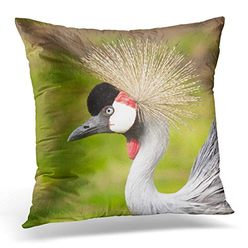 Funda de almohada colorida de grúa coronada en el zoológico holandés, gris, África, funda de almohada decorativa de 45,7 x 45,7 cm