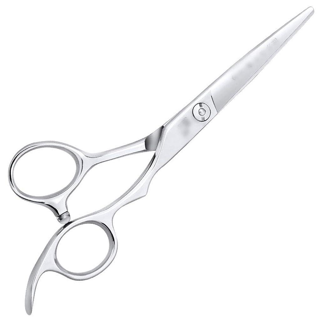 セレナ下に特派員6インチ美容院ツールプロのヘアカット高品質理髪ツール ヘアケア (色 : Silver, Design : Flat)
