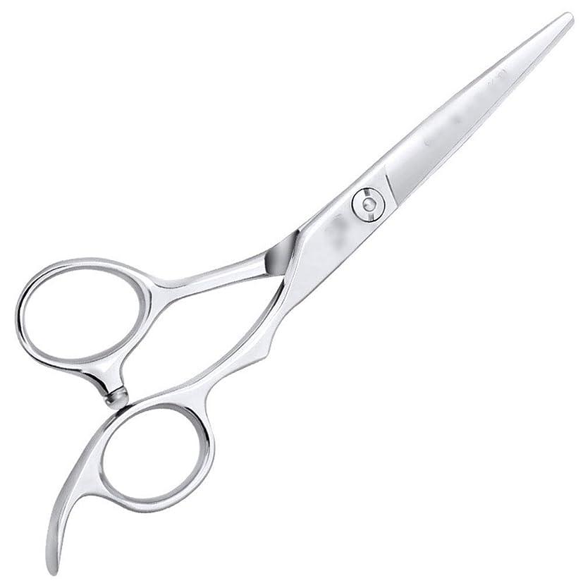蛾おめでとう大破6インチ美容院ツールプロのヘアカット高品質理髪ツール モデリングツール (色 : Silver, Design : Flat)