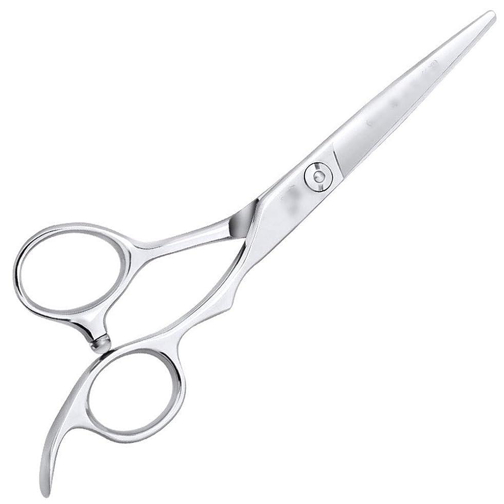 部分眠り誰か6インチ美容院ツールプロのヘアカット高品質理髪ツール モデリングツール (色 : Silver, Design : Flat)