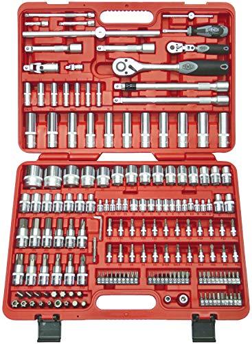 Famex 526-SD-21 Mechaniker Steckschlüsselsatz mit Gelenk- und Feinzahnknarre, 12,5mm (1/2-Zoll)- und 6,3mm (1/4-Zoll)-Antrieb, 4-32mm, 173-teilig