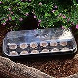 Seed Nursery Tray - Set di 12 blocchi Jiffy Garden Nursery in plastica per giardinaggio...