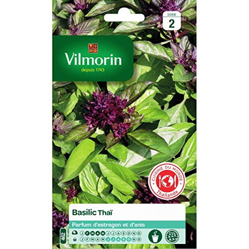 Vilmorin - Sachet graines Basilic Thaï