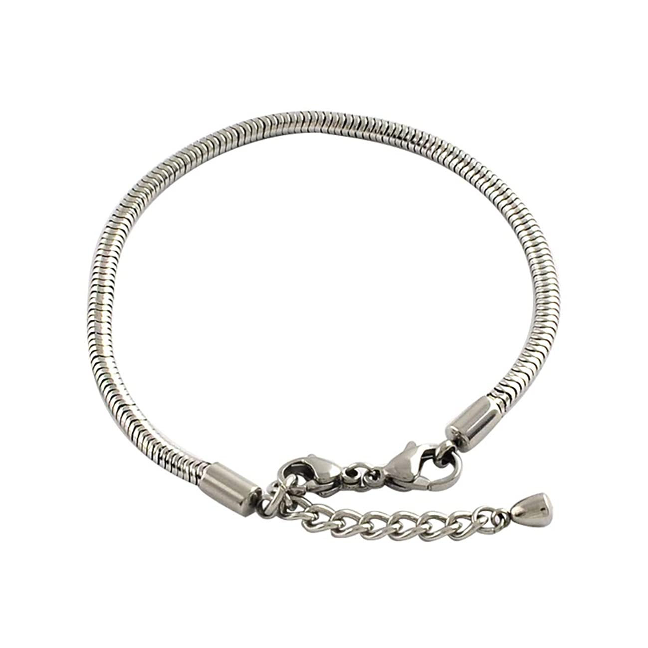 arricraft 10 Strands Stainless Steel European Style Snake Chains Extender Bracelets with Clasps for Jewelry Making, 195x3mm