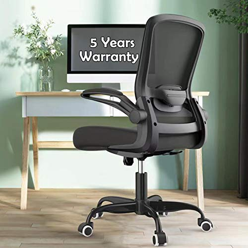Office Chairs Clearance, Ergonomic Desk Chair with Adjustable Lumbar Support, Seat Height, High Back Mesh Computer Chair with Flip-up Armrests - 300lb Weight Capacity Task Chairs (Black)