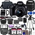 Canon EOS 2000D (Rebel T7) DSLR Camera with EF-S 18-55mm f/3.5-5.6 DC III Lens & Accessory Bundle – Includes: 2X 32GB SDHC Memory Card, Extended Life Battery, Case, Filters, Auxiliary Lenses & More from Blue Pixel