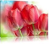 Rote Tulpen Bild auf Leinwand, XXL riesige Bilder fertig